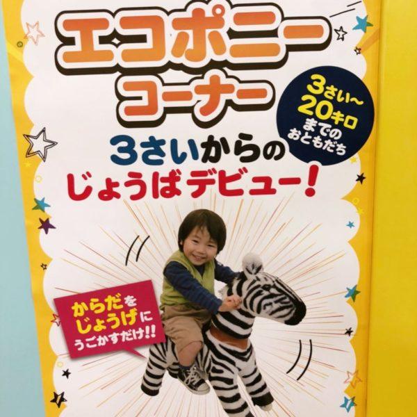 エコポニーコーナーのポスター