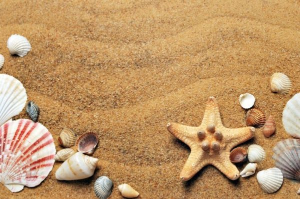 namcoあそびパーク+札幌エスタは、まるで海!の砂場が楽しい!クーポン情報もチェック〈札幌駅〉