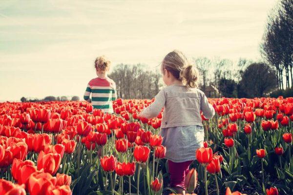 花畑を走る子供