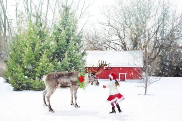 YOUTUBE【子ども向け人気クリスマスソング動画(英語の歌)8選】定番曲や歌詞、CD情報も