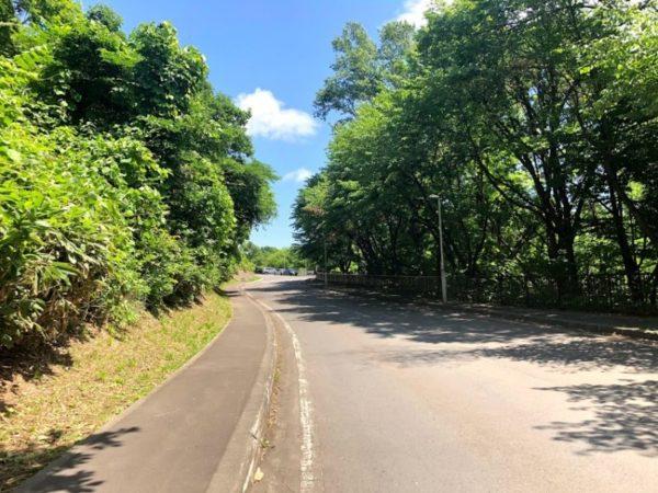 公園への通路