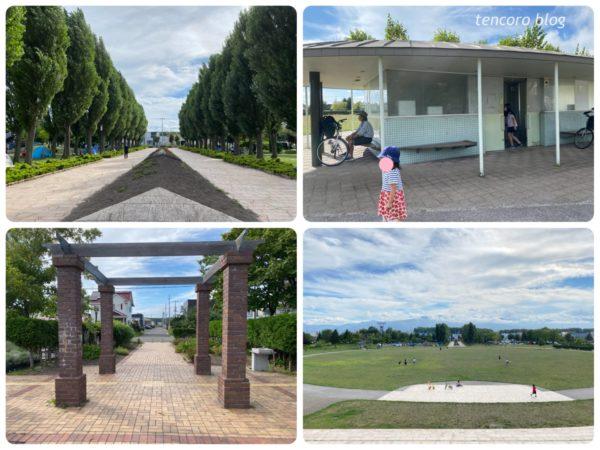 札幌 石狩ふれあいの杜公園