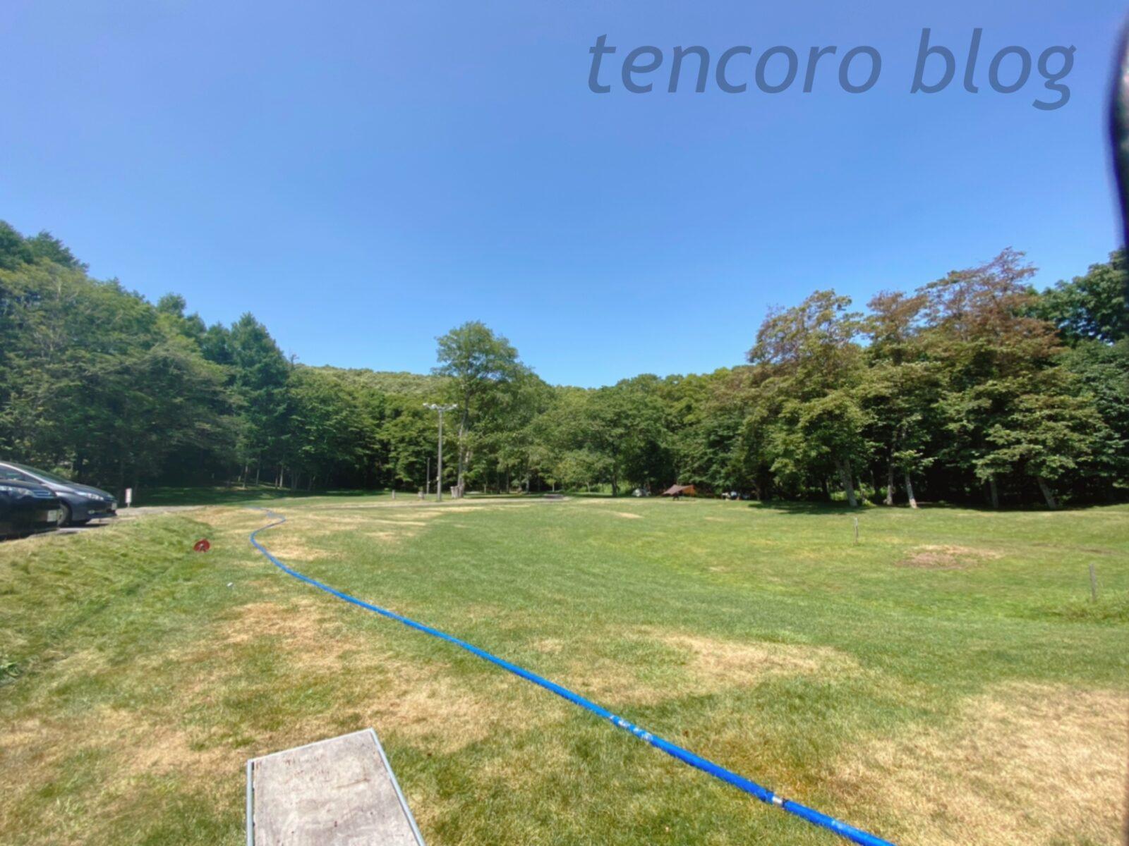 北広島 自然の森キャンプ場 サイト 子連れ