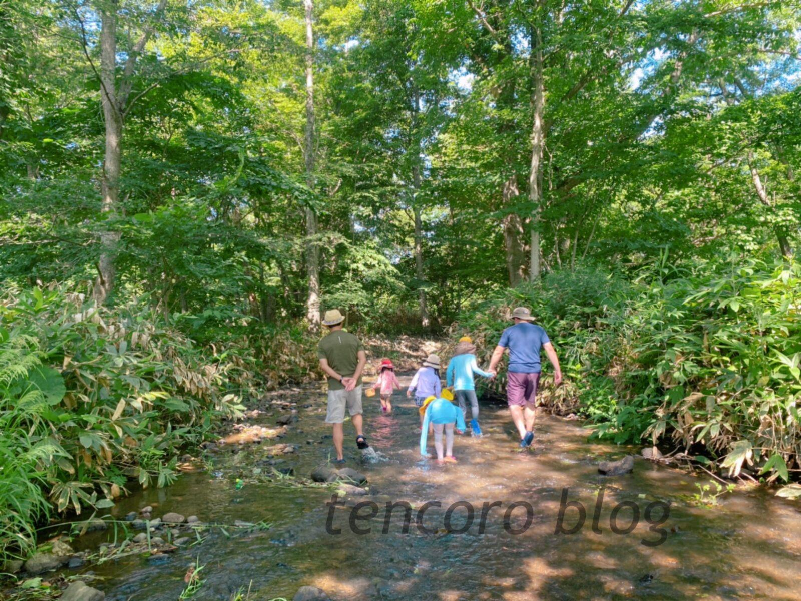 北広島 自然の森キャンプ場 川遊び 子供 遊び場