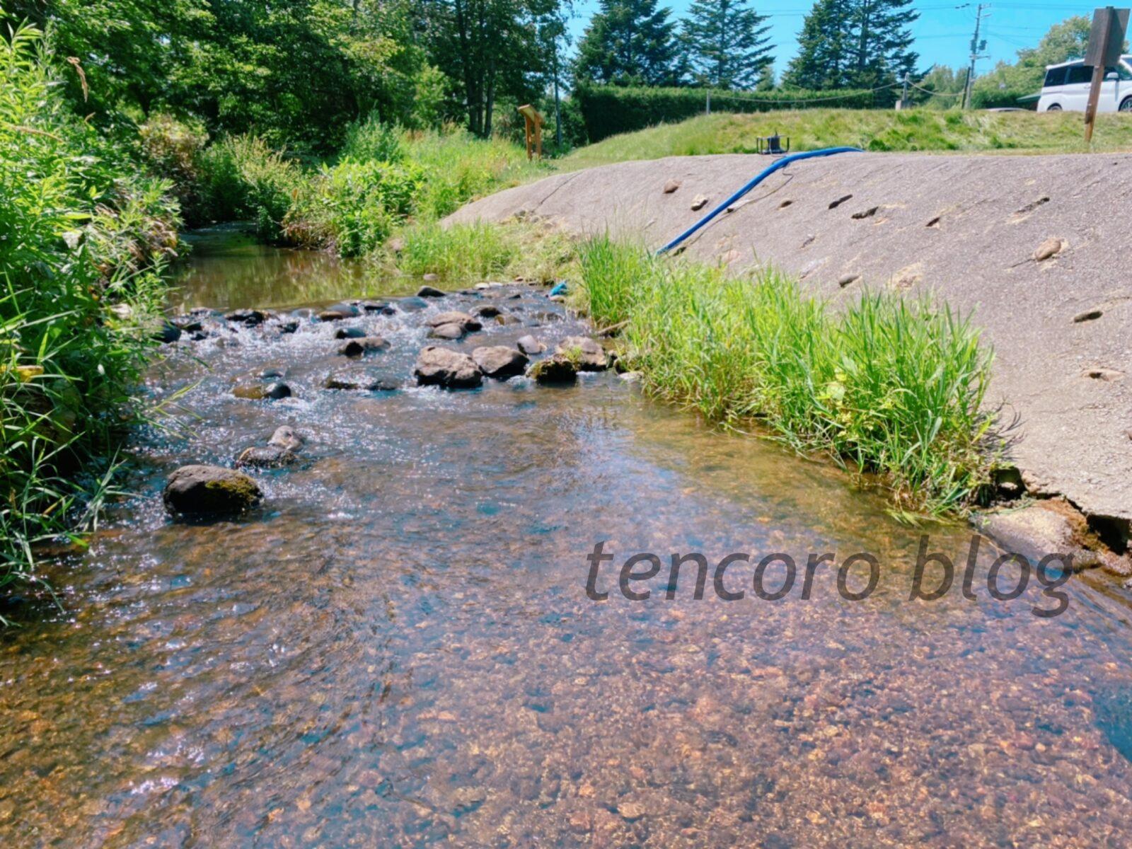 北広島 自然の森キャンプ場 川遊び 水遊び