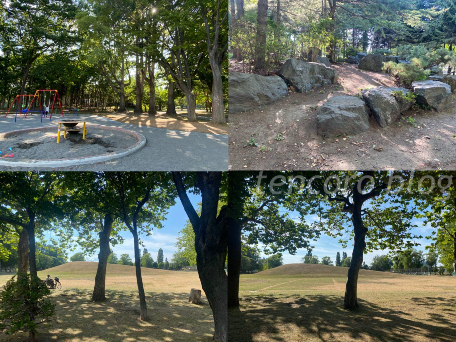 札幌 公園 大規模 伏古