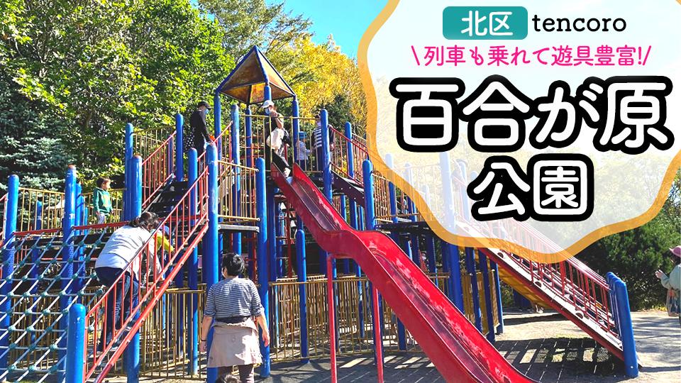 札幌 公園 大型遊具 北区 百合が原公園